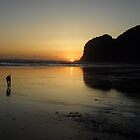 Paradise at Bethells Beach  by chrissy mitchell