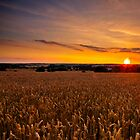 Sunset over Chicheley Hill by James  Key