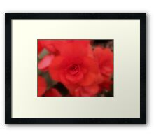 A Soft Touch Of Red Framed Print