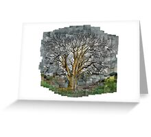 Sycamore, Opposite the Pap of Glencoe, Autumn Light Greeting Card