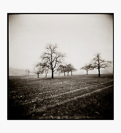 { snow skeletons } Photographic Print