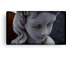 copper winged cutie Canvas Print