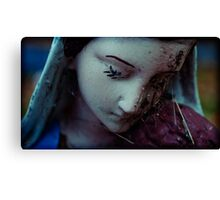 matron of spiders Canvas Print