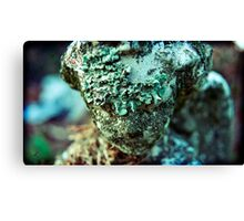 leper bathed in light Canvas Print