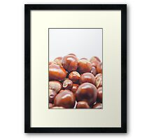 Game of Conkers Anyone? Framed Print