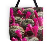 succulent plant Tote Bag