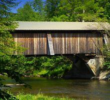 Motts Flats Covered Bridge by Pamela Phelps