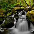 The Overflow by Charles & Patricia   Harkins ~ Picture Oregon