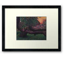 European tree Framed Print