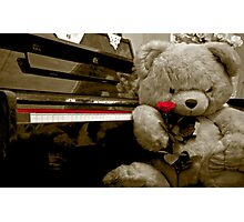 TEDDY BEAR PIANO ROSE FLOWER Photographic Print