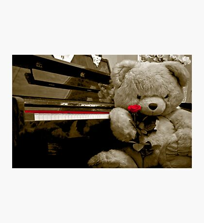 TEDDY BEAR PIANO ROSE FLOWER Photographic Print