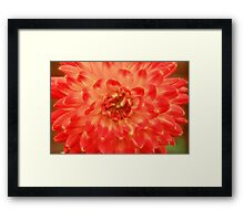 Hot Touch. Framed Print