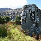 Standing stone, Coomgira, Adrigole by CliveOnBeara