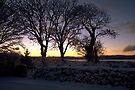 Snowy sunrise, Beara by CliveOnBeara
