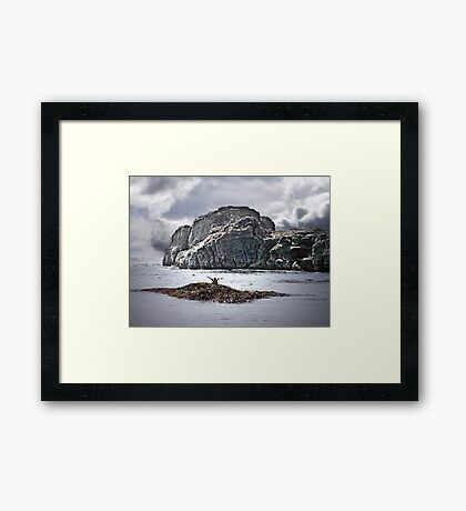 Greetings from a Seabird Framed Print