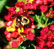 Lantanas and the Bee by Susan Savad