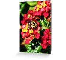 Lantanas and the Bee Greeting Card