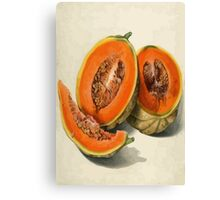 Vintage Vector Style Thanksgiving Pumpkin Slices Canvas Print