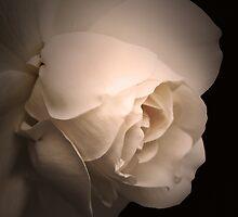 melancholy by lucyliu