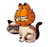 Grumpy cat disguise Photographic Print