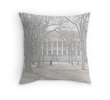 Widener Library - Harvard Yard Throw Pillow
