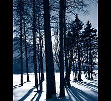 Winter Light by illufox