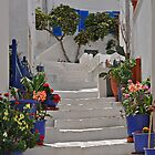 Stairway, Naxos by Peter Hammer