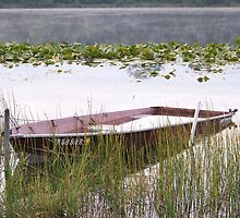 Serenity at Stanton Lake by Bonnie Phillips