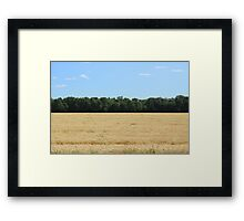 Grain Field on the Prairies Framed Print