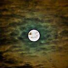 moon by David Roman