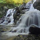 Hornsbeck Creek Falls by Stephen Vecchiotti