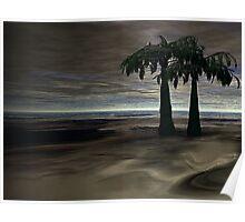 Palm Scene Poster