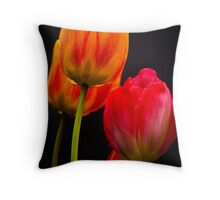 red & orange Throw Pillow