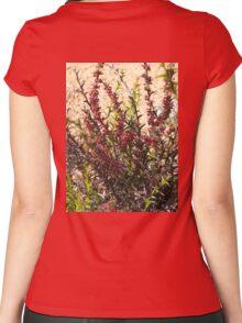 Daviesia decurrens Women's Fitted Scoop T-Shirt