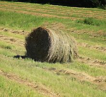 Hay Bale Next to a Road by rhamm
