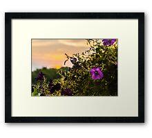 Roseland Nursery Framed Print