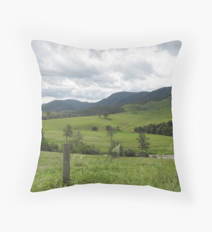 Bretti's Reserve  Throw Pillow
