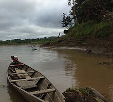 The Amazon River - Lecticia, Colombia by ElasticEARTH