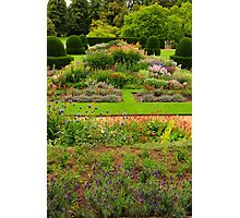 Flower Beds, Blickling Hall, National Trust, uk.  Photographic Print
