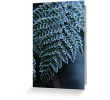 Crystalline Frosted Fern Greeting Card