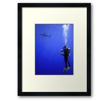 Watching the Oceanic Whitetip Framed Print