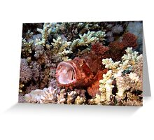 Red Scorpian Fish With Mouth Open Greeting Card