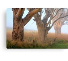 Three Giants - Ceres Canvas Print