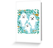 White cute fur seal and fish in water Greeting Card