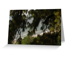 Black Sea and Pine Boughs Greeting Card