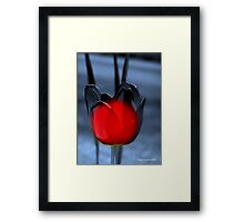 Luminous delight Framed Print