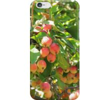 Ornamental Apples on a Tree iPhone Case/Skin