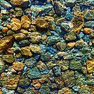 Rock Bottom by Bruce Taylor