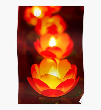 lotus light Poster
