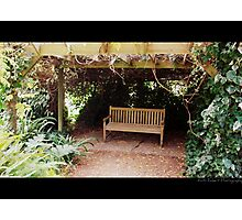 Kinclaven (Bench) Photographic Print